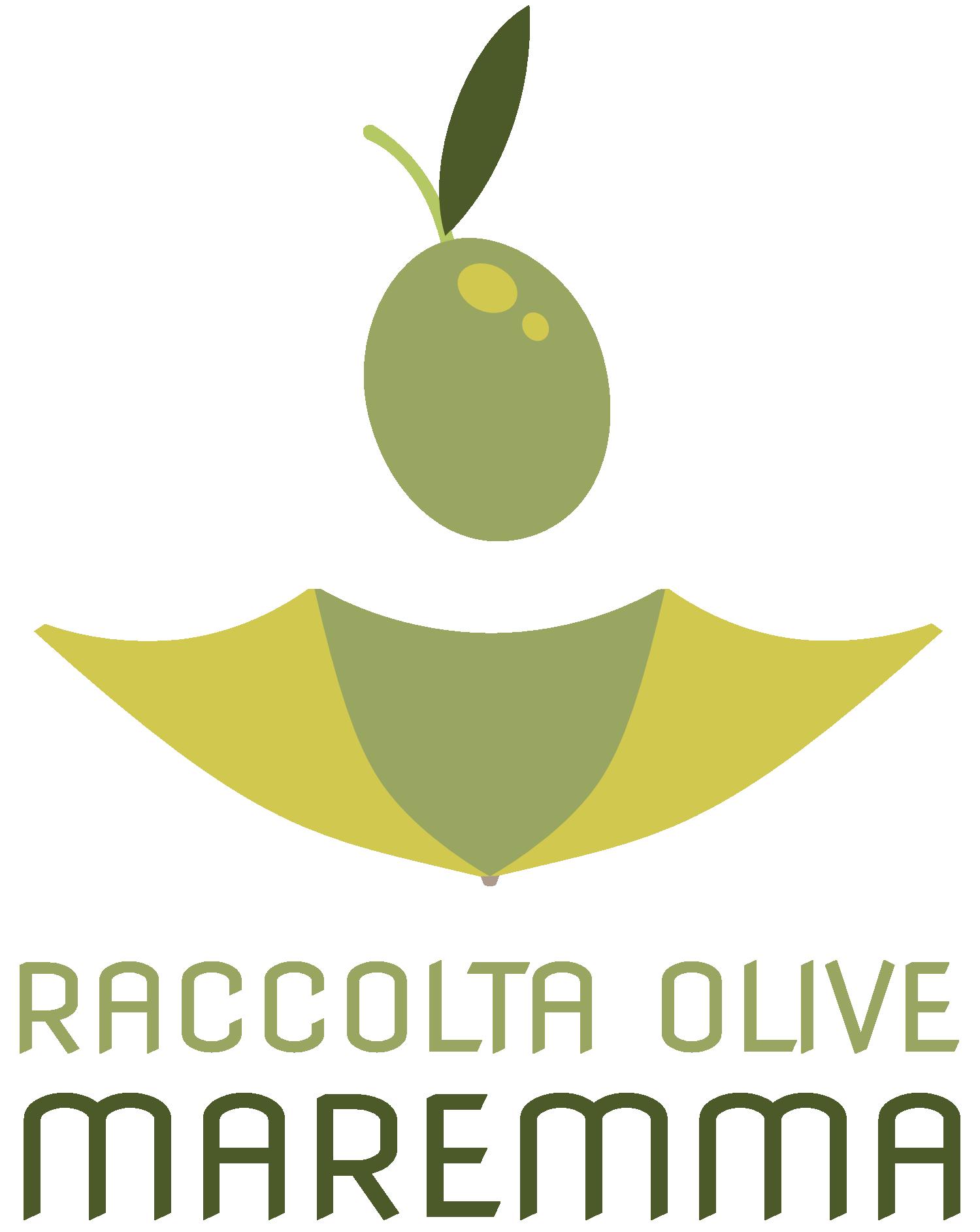 Raccolta Olive in Maremma